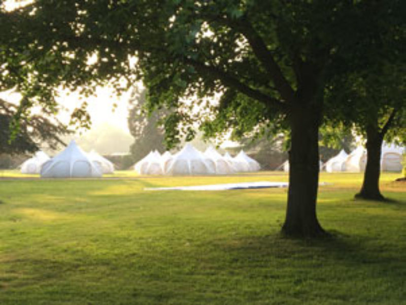 Red-Rooster-lotus-belle-tents