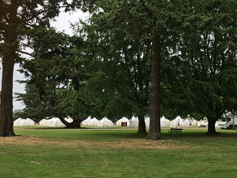 belle-tents-beneath-the-trees